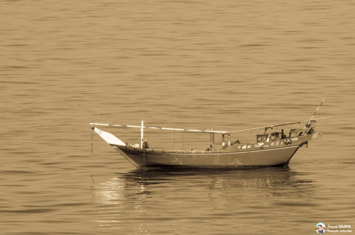 Fsai171219 02 Golfe Persique