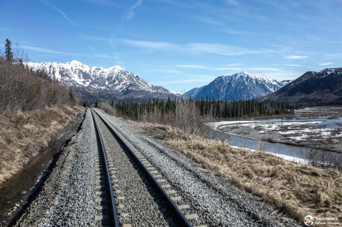 Fsai180526 024 Denali Anchorage