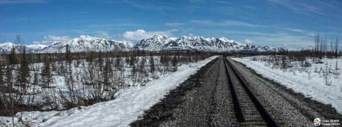 Fsai180526 045 Denali Anchorage