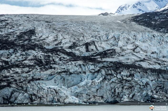 Fsai180529 057 GlacierBay