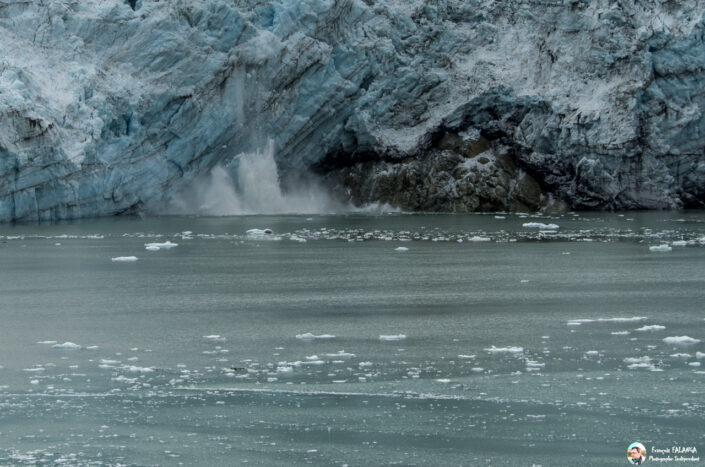 Fsai180529 120 GlacierBay
