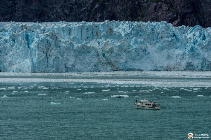 Fsai180529 144 GlacierBay