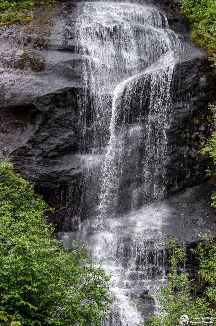 Fsai180601 115 Ketchikan MistyFjords