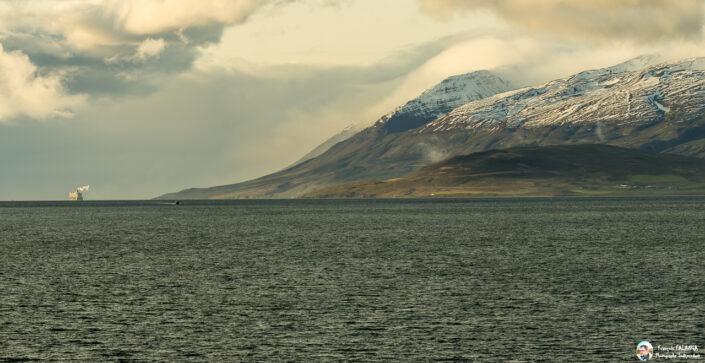 Fsai190815 214 Islande Akureyri