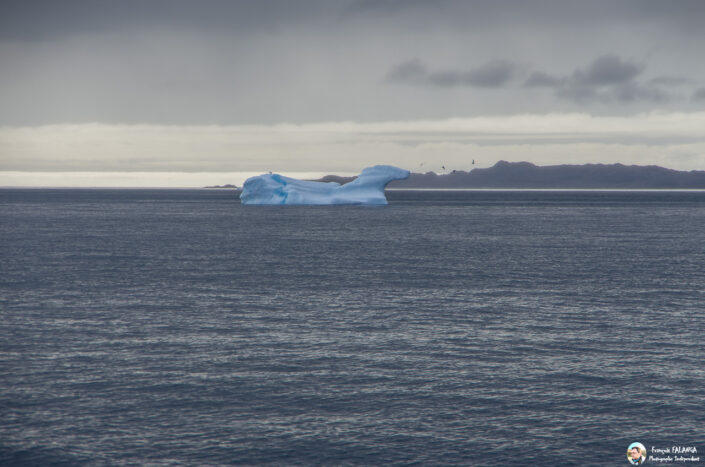 Fsai190819 117 Nuuk