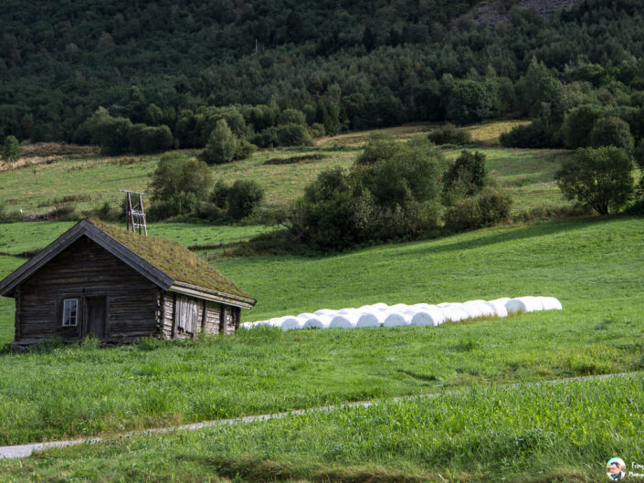 Fsai190909 080 Norvege Olden